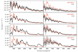 Spectral evolution of our delayed detonation N100 (left) and merger model (right) from 6 to 27 days after the explosion. The angle-averaged spectrum is plotted in black, while 25 spectra for representative viewing angles are shown in gray. For comparison the observed spectra of SN 2011fe are over plotted in red assuming an explosion date at August 23.7.